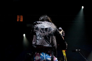 Yeah Yeah Yeahs at Ottawa Bluesfest