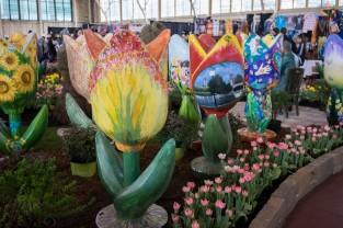Canadian Tulip Festival 2016-10