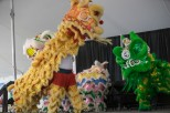 Lion Dance at 2016 Ottawa Dragon Boat Festival-4