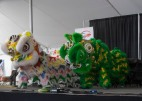 Lion Dance at 2016 Ottawa Dragon Boat Festival-5